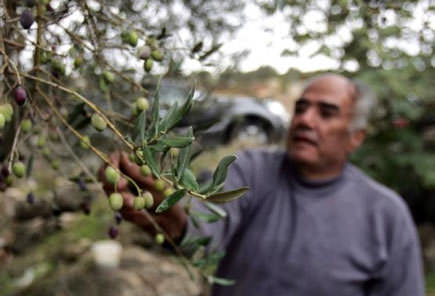 producers-in-lebanon-benefit-from-reduced-syrian-imports