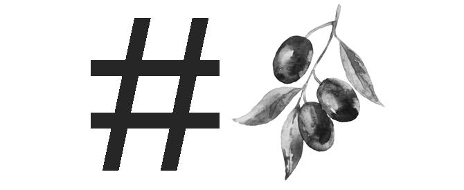 olive-harvest-gets-social-in-italy-olive-harvest-goes-social